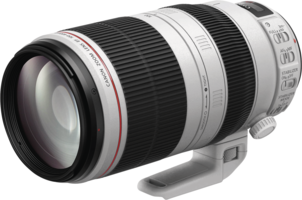 Canon EF 28-300mm 1:3,5-5,6 L IS USM